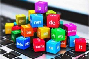 什么是域名