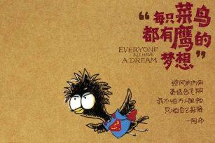 每只菜鸟都有鹰的梦想之菜鸟踏入SEO行业的艰苦与迷茫