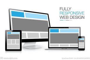 门户网站推广运营方案